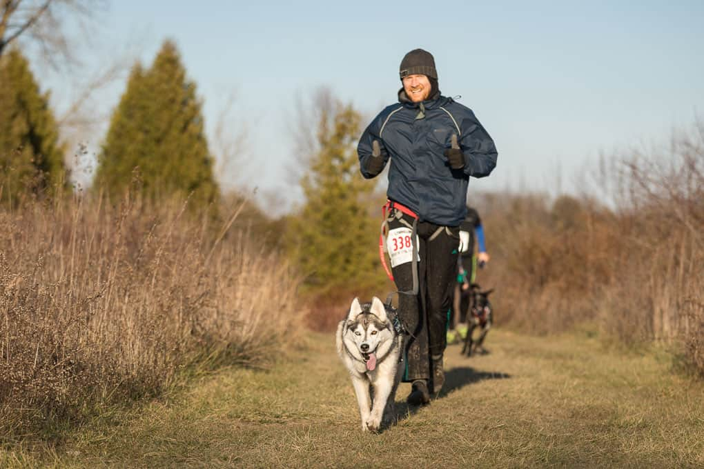 man and husky running at canicross trail race