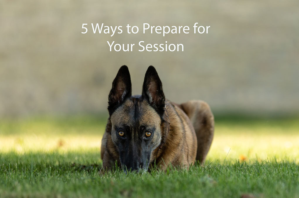 5 Ways to Prepare for Your Session