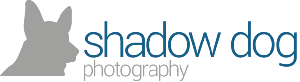 Shadow Dog Photography