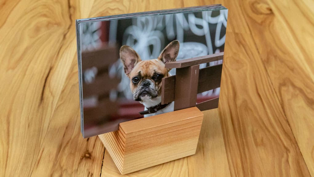 Print of a dog on a wood base